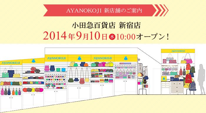 20140910sinjyuku04