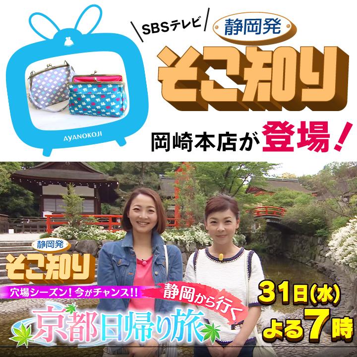テレビ sbs MBC・KBS・SBS・JTBC・tvN韓国テレビ試聴方法